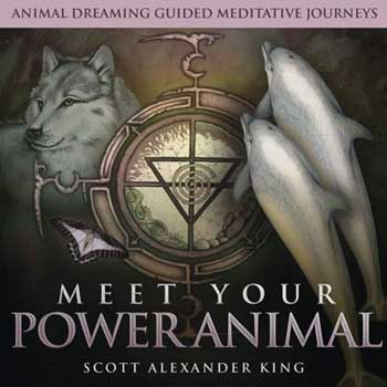CD: Meet your Power Animal (king)