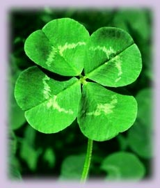 Free Luck of the Irish Good Luck Spell performed from me for you with any order