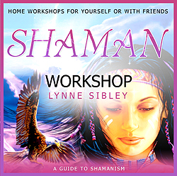 Shaman Workshop